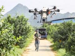2020飞防创战纪广西赛落幕,大疆与先正达等合作赋能飞防生态圈